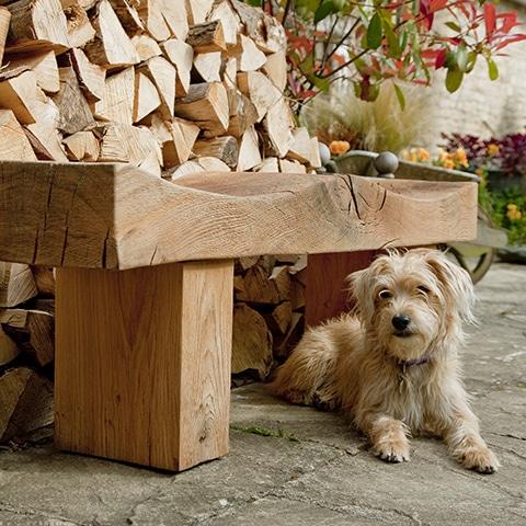 Scrumpie outside Real Wood Furniture Showroom
