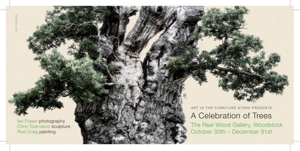 a celebration of trees invitation